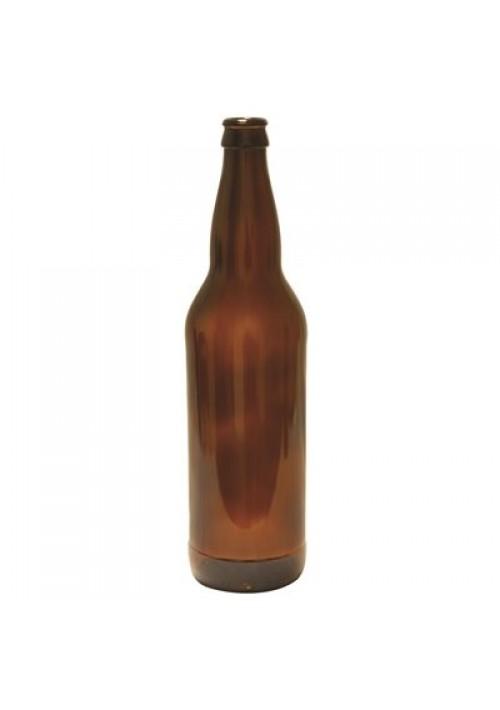 Bouteilles de bière 660 ml