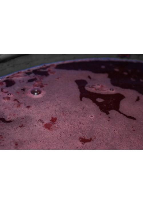 Service de Vinification de vin
